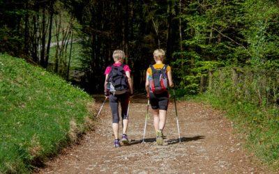 Wkładki dobutów trekkingowych